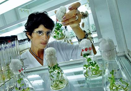 La Ciencia aplicada en la agriculturaFOTO: Roberto Suárez