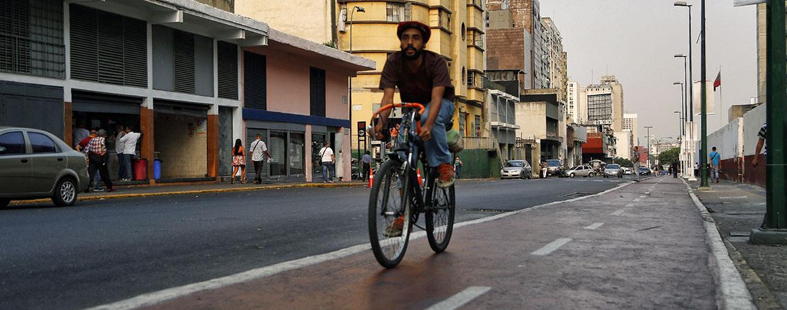 gata_Caracas