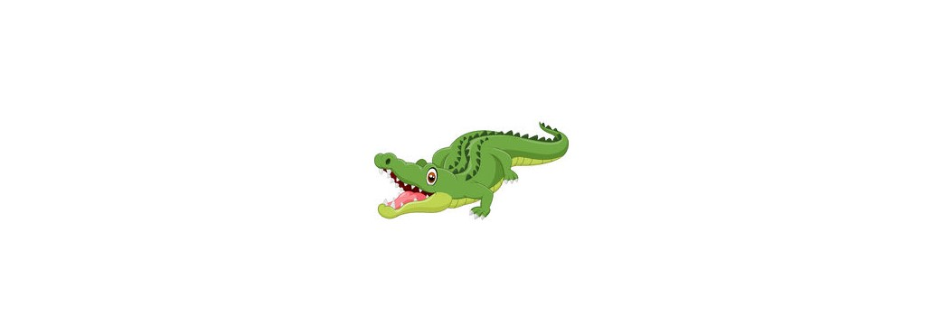 Krokodil nr 2